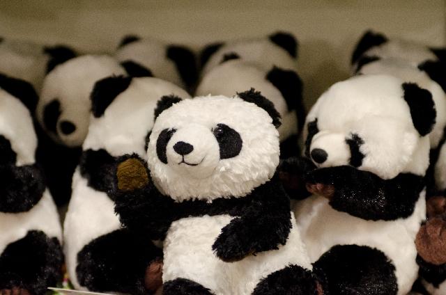 あなたは知ってますか?集客するには客寄せパンダ!集客する為の考えかとその方法