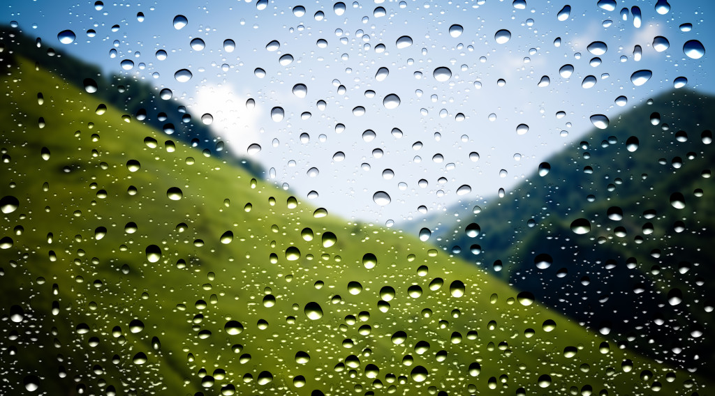 stockvault-waterdrops-on-window134615